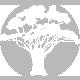 arbre80gris